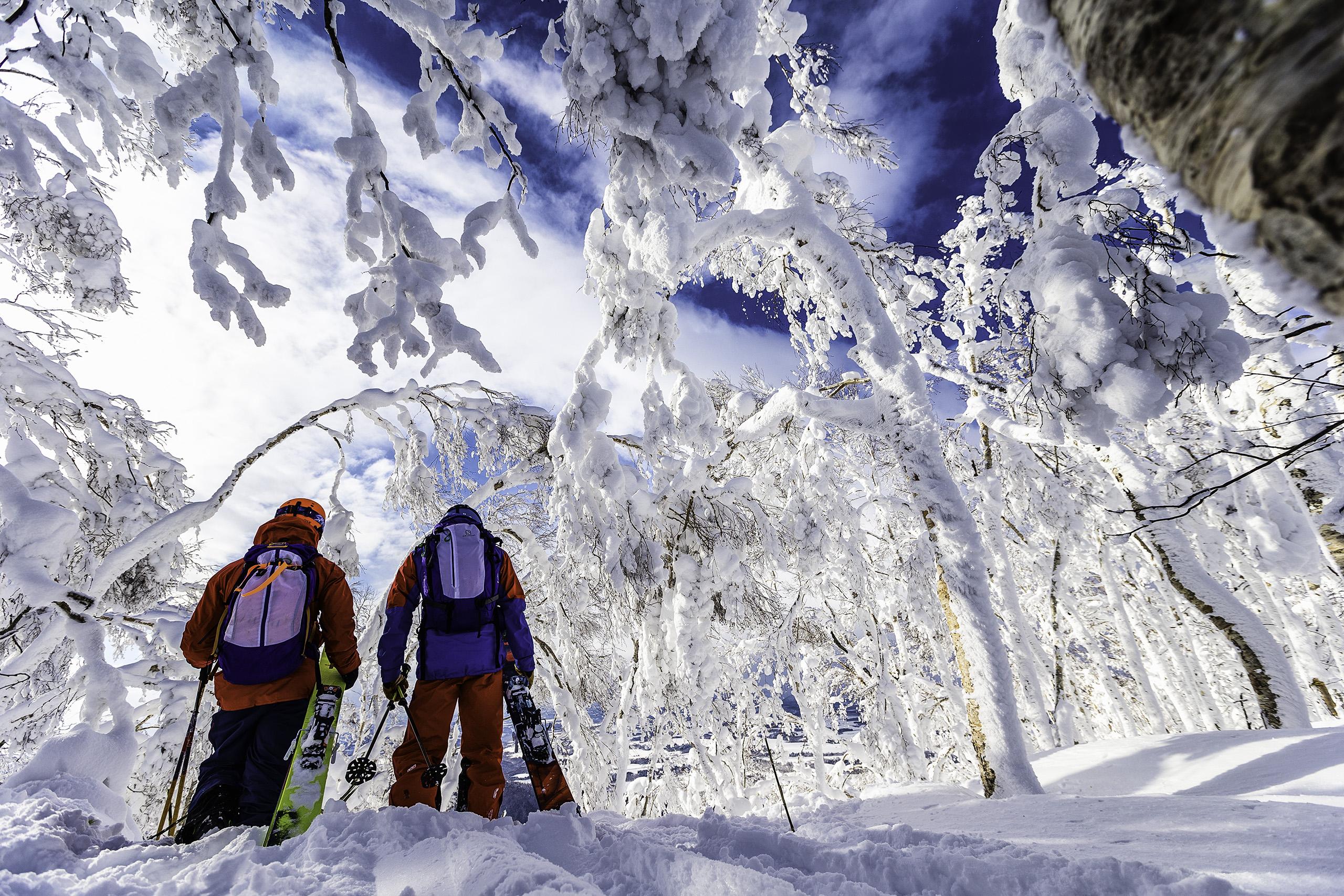 skiing at Rusutsu